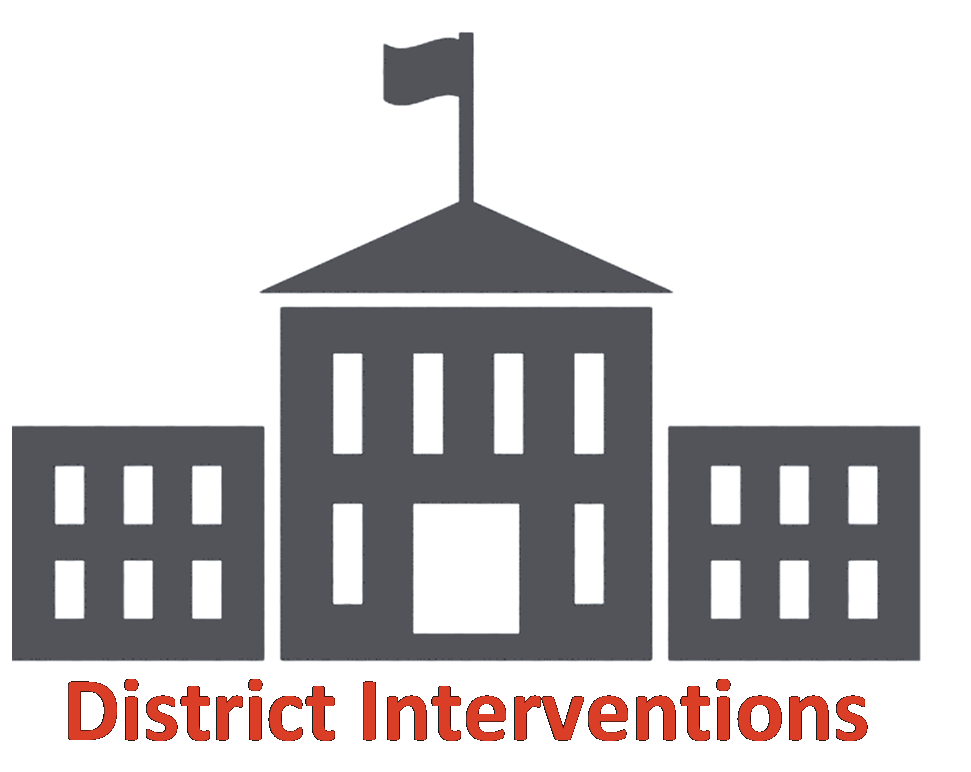District Interventions Icon